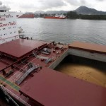 Assessing The Dry Bulk Market At Rock Bottom