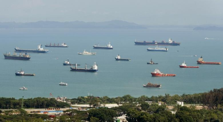 Container ships and bulk carriers waiting for cargo are seen in the shipping lanes off the coast of Singapore April 18, 2009.  REUTERS/Vivek Prakash