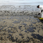 China plans first lab on ocean oil spill cleaning: media