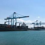 APM Terminals to divest Izmir terminal