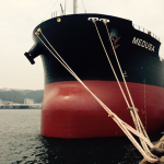Diana Shipping: Direct Continuation of Time Charter Contract for m/v Medusa with Cargill