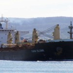 Globus Maritime Reports 35% Decrease in Voyage Revenues
