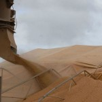 Brazil's soy exporters set for massive March