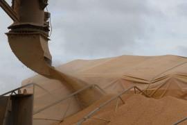 soybean export brazil