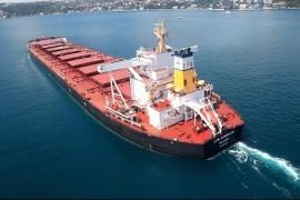 Diana-Shipping-Panamax
