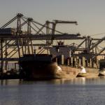 Judge strikes down Oakland's ban on shipping coal through port